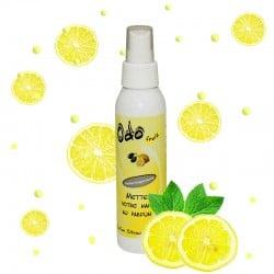 Désodorisant Odofruit Citron
